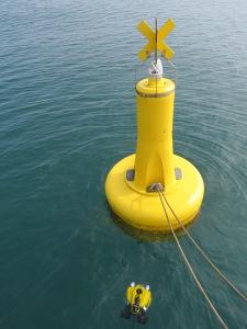 ROV buoy